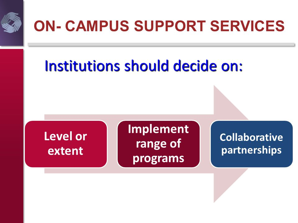 ON- CAMPUS SUPPORT SERVICES Level or extent Implement range of programs Collaborative partnerships Institutions should decide on: