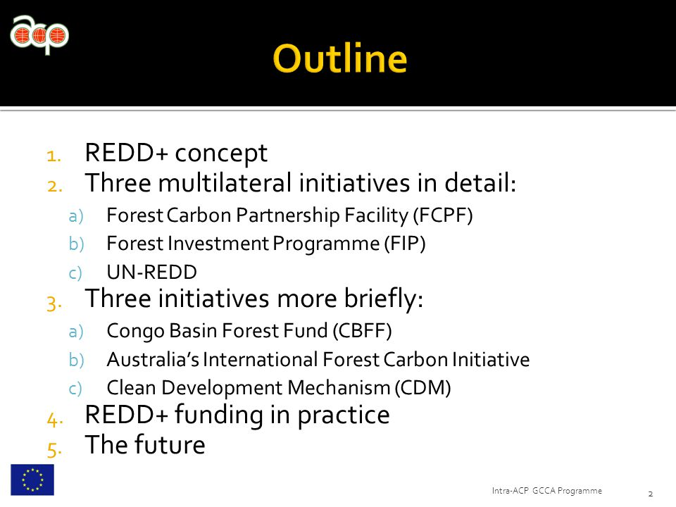 1. REDD+ concept 2. Three multilateral initiatives in detail: a) Forest Carbon Partnership Facility (FCPF) b) Forest Investment Programme (FIP) c) UN-