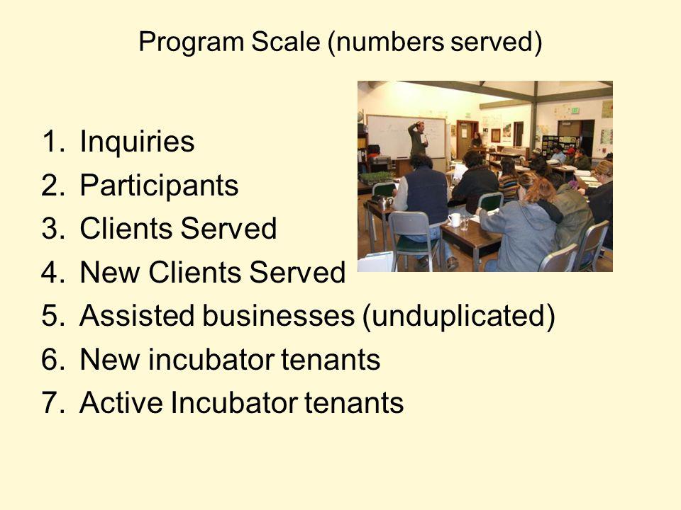 Program Scale (numbers served) 1.Inquiries 2.Participants 3.Clients Served 4.New Clients Served 5.Assisted businesses (unduplicated) 6.New incubator t