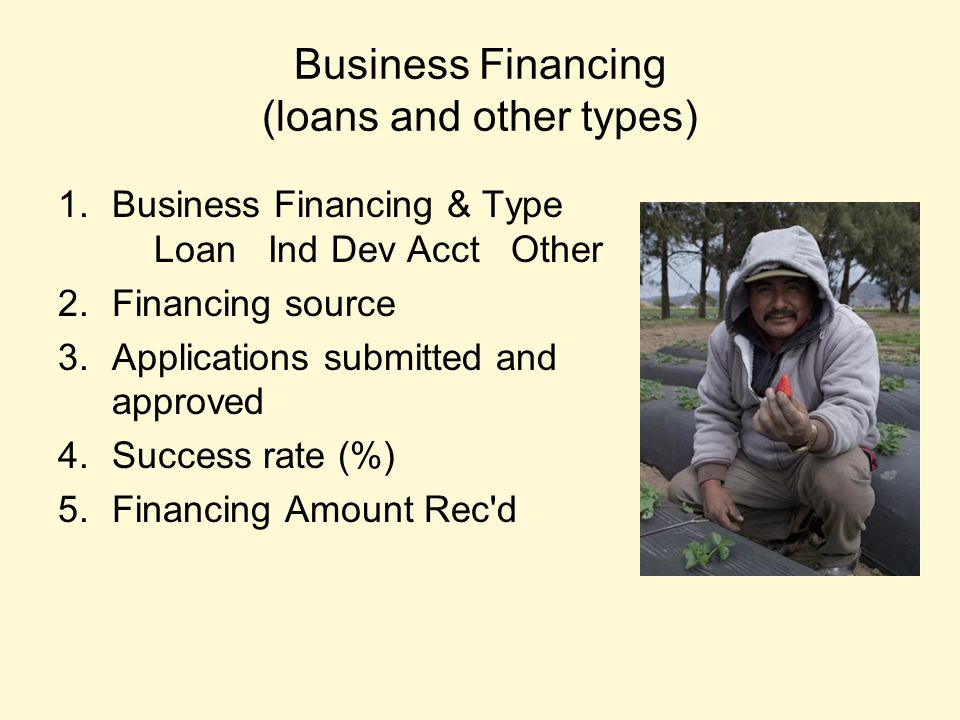 Business Financing (loans and other types) 1.Business Financing & Type Loan Ind Dev Acct Other 2.Financing source 3.Applications submitted and approved 4.Success rate (%) 5.Financing Amount Rec d