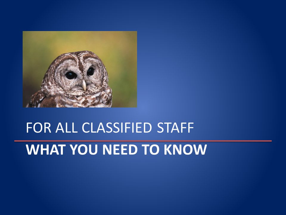 WHAT YOU NEED TO KNOW FOR ALL CLASSIFIED STAFF