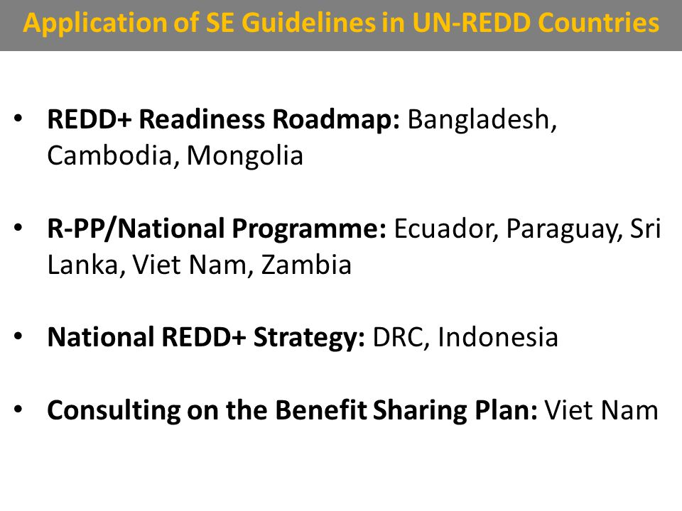 REDD+ Readiness Roadmap: Bangladesh, Cambodia, Mongolia R-PP/National Programme: Ecuador, Paraguay, Sri Lanka, Viet Nam, Zambia National REDD+ Strategy: DRC, Indonesia Consulting on the Benefit Sharing Plan: Viet Nam Application of SE Guidelines in UN-REDD Countries