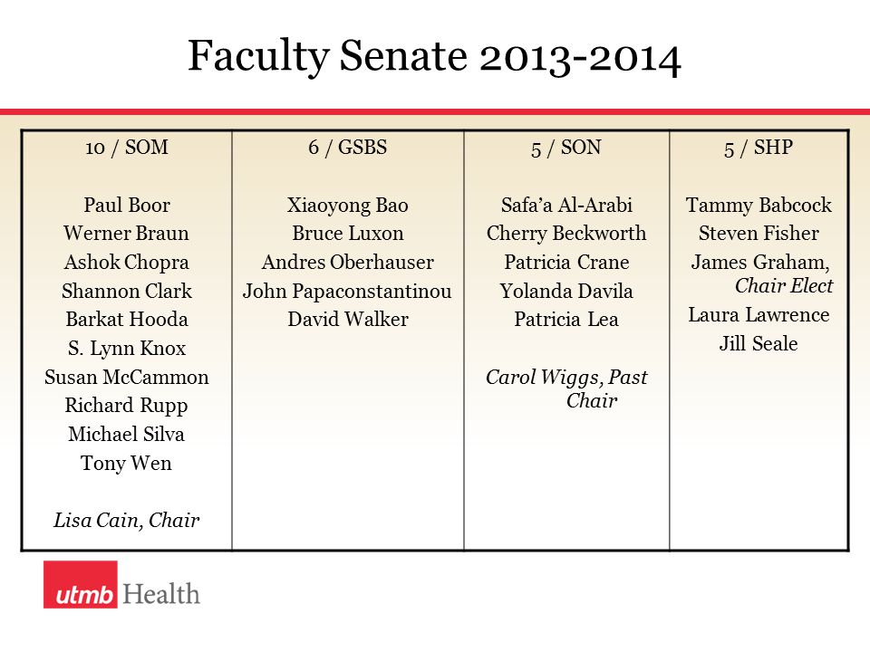 Issues Addressed/Activities 2013-2014 Mentoring The Senate collaborated with Dr.