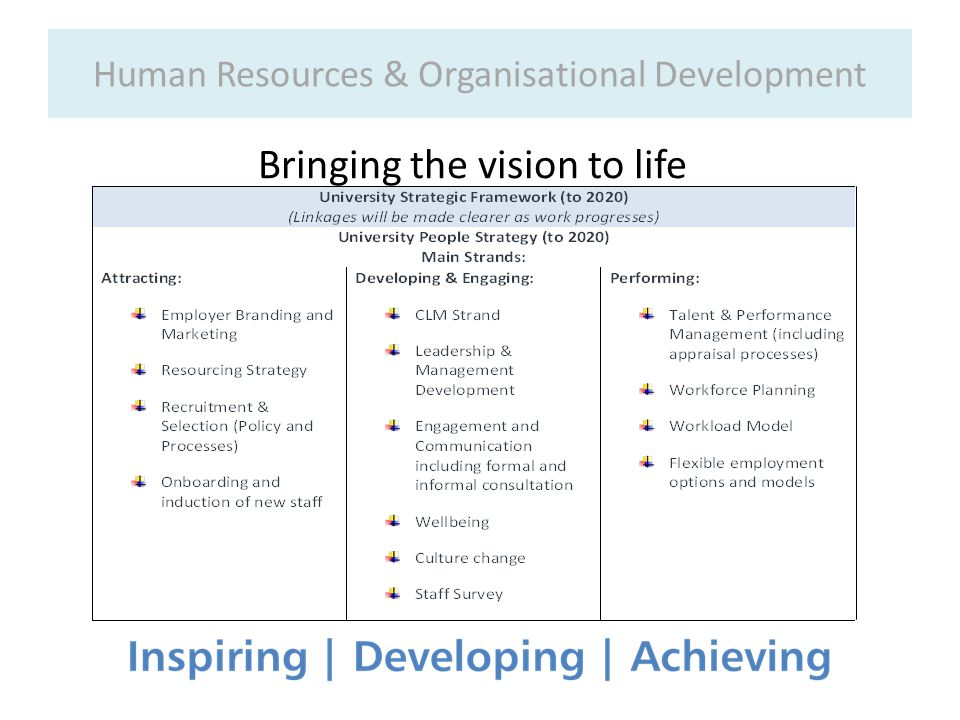 Human Resources & Organisational Development Bringing the vision to life