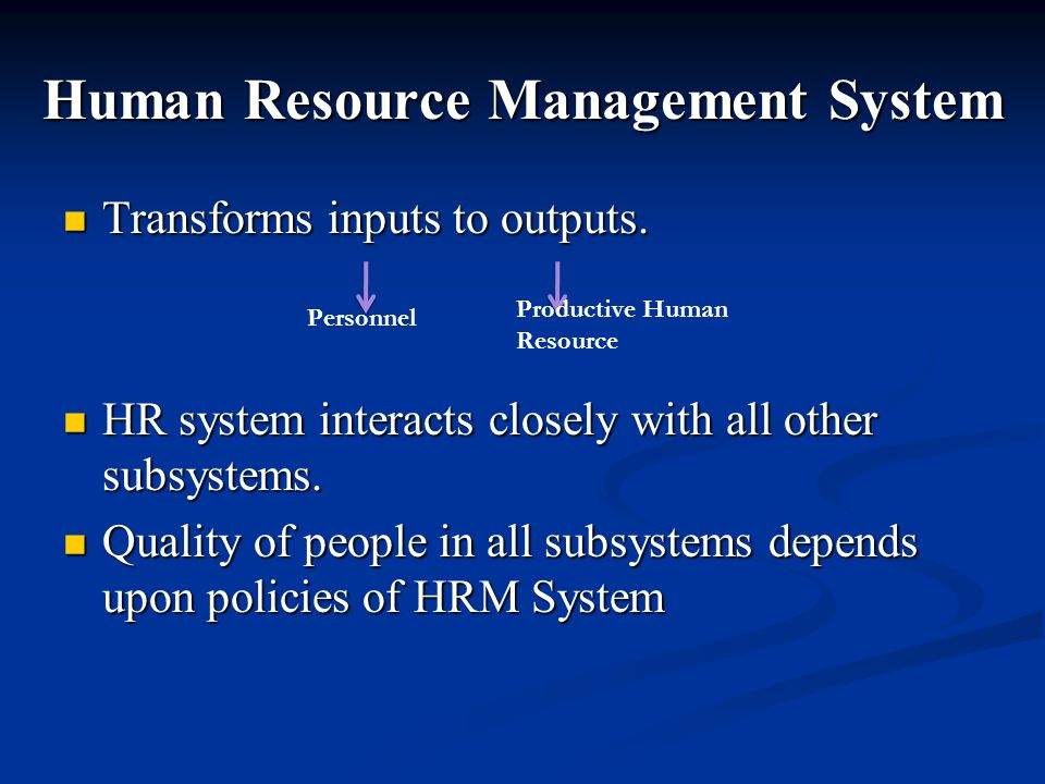 Human Resource Management System Transforms inputs to outputs.