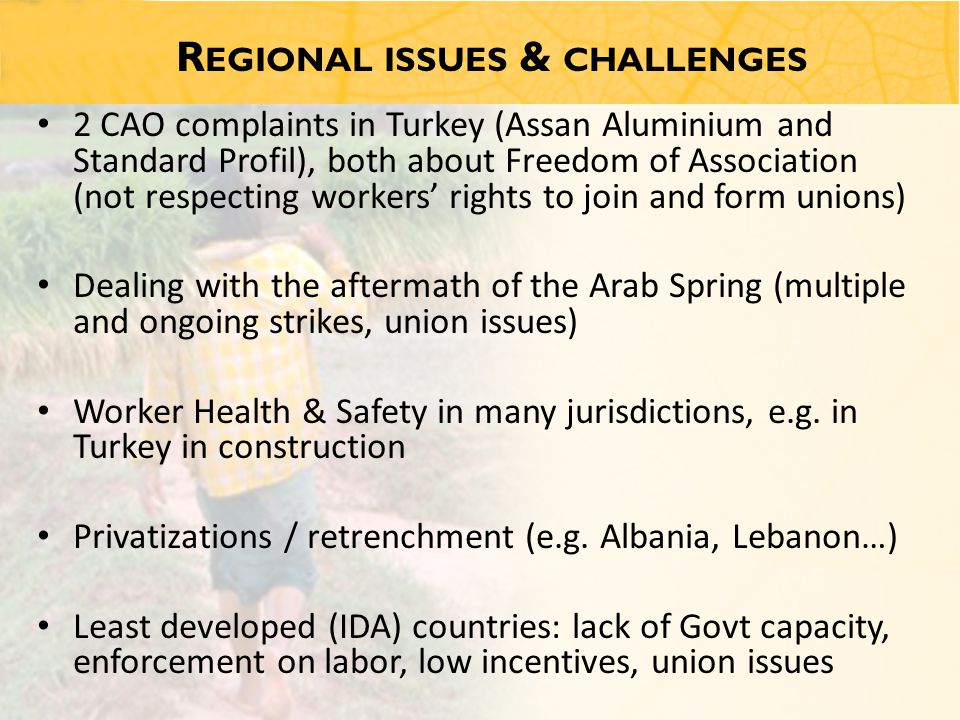 R EGIONAL ISSUES & CHALLENGES 2 CAO complaints in Turkey (Assan Aluminium and Standard Profil), both about Freedom of Association (not respecting workers' rights to join and form unions) Dealing with the aftermath of the Arab Spring (multiple and ongoing strikes, union issues) Worker Health & Safety in many jurisdictions, e.g.