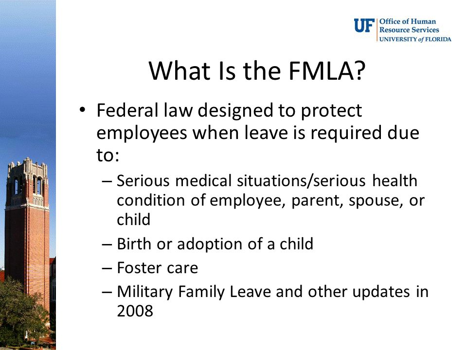 What Is the FMLA.