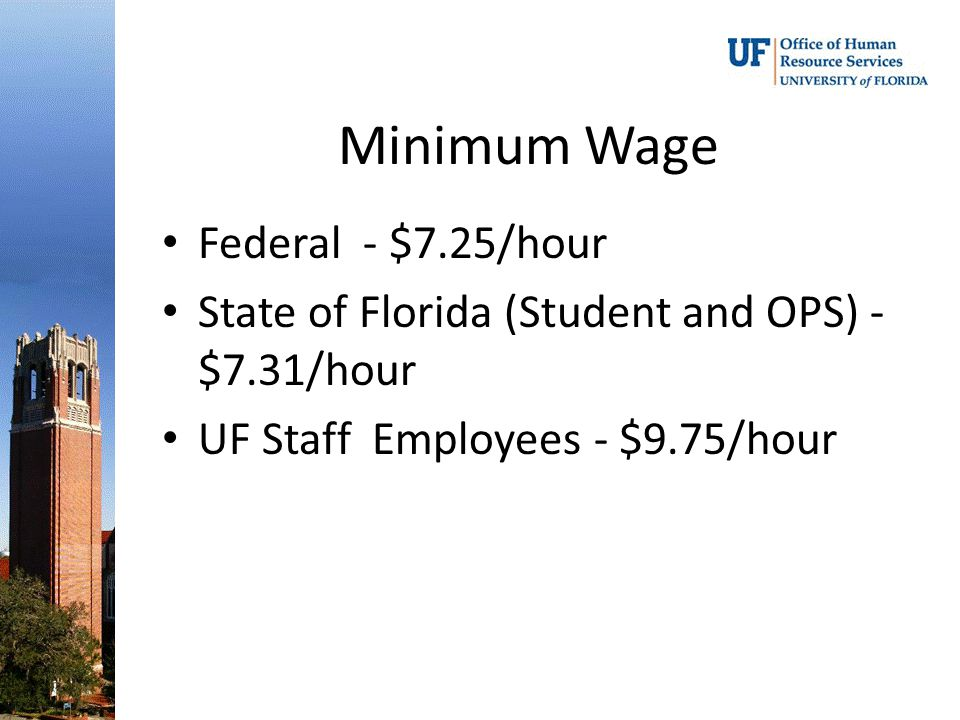 Minimum Wage Federal - $7.25/hour State of Florida (Student and OPS) - $7.31/hour UF Staff Employees - $9.75/hour