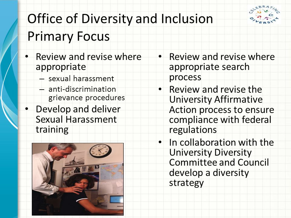 Office of Diversity and Inclusion Primary Focus Review and revise where appropriate – sexual harassment – anti-discrimination grievance procedures Develop and deliver Sexual Harassment training Review and revise where appropriate search process Review and revise the University Affirmative Action process to ensure compliance with federal regulations In collaboration with the University Diversity Committee and Council develop a diversity strategy