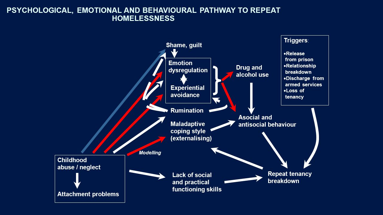 PSYCHOLOGICAL, EMOTIONAL AND BEHAVIOURAL PATHWAY TO REPEAT HOMELESSNESS Childhood abuse / neglect Emotion dysregulation Experiential avoidance Maladaptive coping style (externalising) Rumination Shame, guilt Drug and alcohol use Asocial and antisocial behaviour Lack of social and practical functioning skills Repeat tenancy breakdown Triggers : Release from prison Relationship breakdown Discharge from armed services Loss of tenancy Modelling Attachment problems
