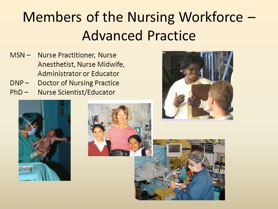 Members of the Nursing Workforce – Advanced Practice MSN – Nurse Practitioner, Nurse Anesthetist, Nurse Midwife, Administrator or Educator DNP – Doctor of Nursing Practice PhD – Nurse Scientist/Educator