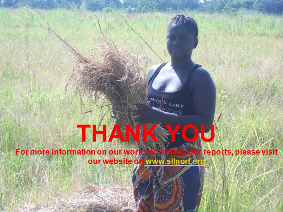 THANK YOU For more information on our work and to read our reports, please visit our website on www.silnorf.orgwww.silnorf.org