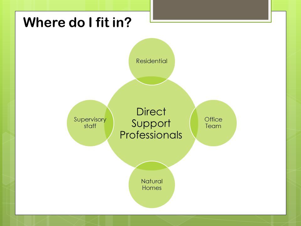 Where do I fit in? Direct Support Professionals Residential Office Team Natural Homes Supervisory staff