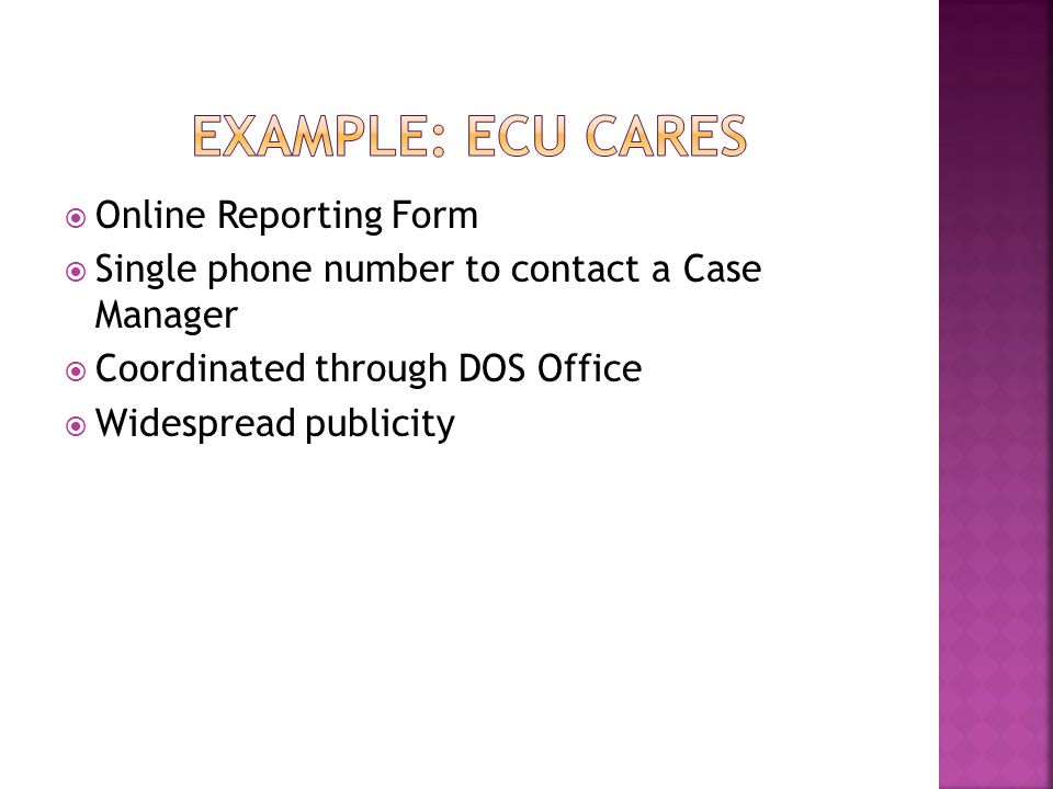  Online Reporting Form  Single phone number to contact a Case Manager  Coordinated through DOS Office  Widespread publicity