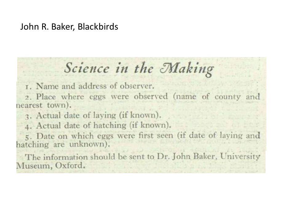 John R. Baker, Blackbirds