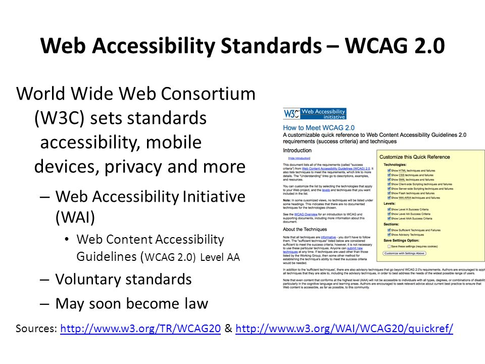 Web Accessibility Standards – WCAG 2.0 World Wide Web Consortium (W3C) sets standards accessibility, mobile devices, privacy and more – Web Accessibility Initiative (WAI) Web Content Accessibility Guidelines ( WCAG 2.0) Level AA – Voluntary standards – May soon become law Sources: http://www.w3.org/TR/WCAG20 & http://www.w3.org/WAI/WCAG20/quickref/http://www.w3.org/TR/WCAG20http://www.w3.org/WAI/WCAG20/quickref/