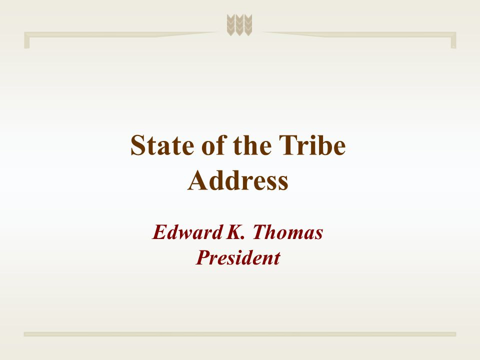 Statute Changes Special Statute Drafting Committee Change Our Statutes with the Times Strengthen Tribal Status Among Governments Strengthen Standards in Tribal Judge Elections without Being too Limiting Executive Council Adopted Title VI Replacement with Amendments