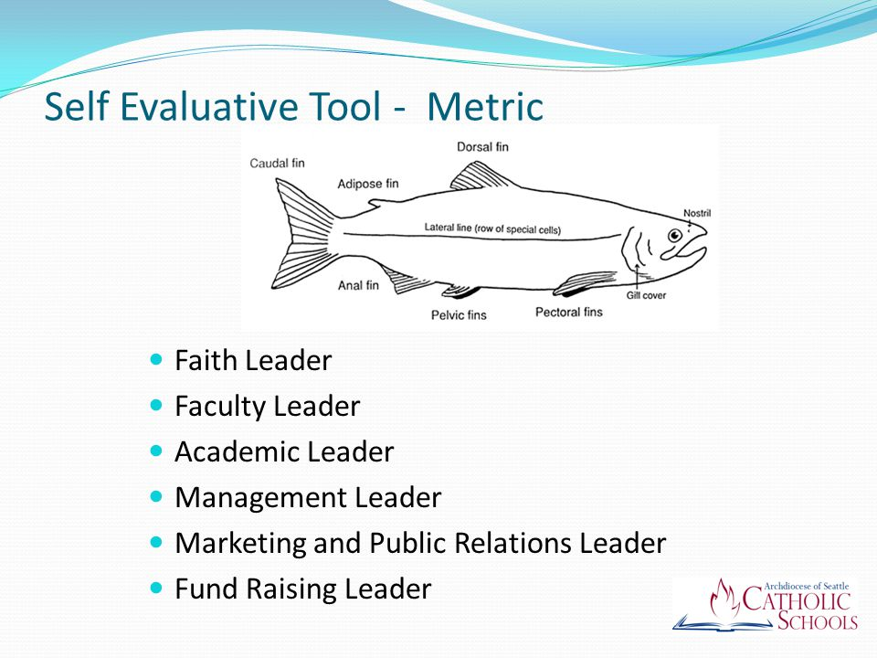 Self Evaluative Tool - Metric Faith Leader Faculty Leader Academic Leader Management Leader Marketing and Public Relations Leader Fund Raising Leader