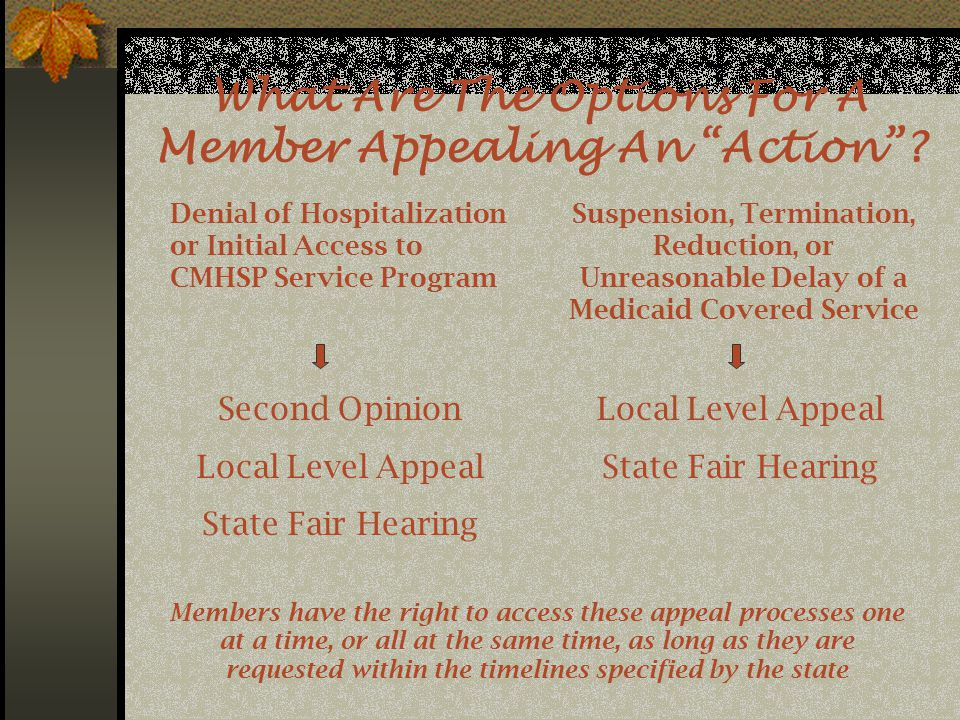 What Are The Options For A Member Appealing An Action .