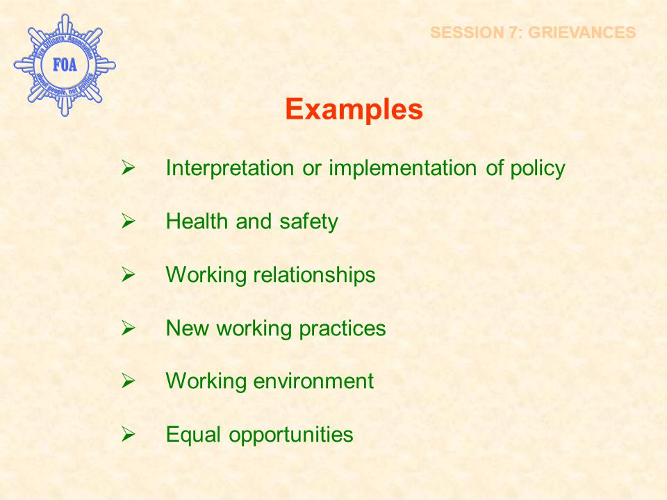 Examples  Interpretation or implementation of policy  Health and safety  Working relationships  New working practices  Working environment  Equa