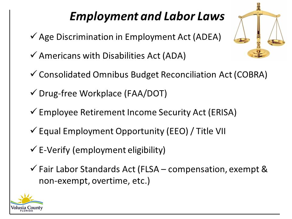 Employment and Labor Laws Age Discrimination in Employment Act (ADEA) Americans with Disabilities Act (ADA) Consolidated Omnibus Budget Reconciliation Act (COBRA) Drug-free Workplace (FAA/DOT) Employee Retirement Income Security Act (ERISA) Equal Employment Opportunity (EEO) / Title VII E-Verify (employment eligibility) Fair Labor Standards Act (FLSA – compensation, exempt & non-exempt, overtime, etc.)