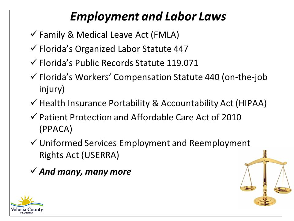 Employment and Labor Laws Family & Medical Leave Act (FMLA) Florida's Organized Labor Statute 447 Florida's Public Records Statute 119.071 Florida's Workers' Compensation Statute 440 (on-the-job injury) Health Insurance Portability & Accountability Act (HIPAA) Patient Protection and Affordable Care Act of 2010 (PPACA) Uniformed Services Employment and Reemployment Rights Act (USERRA) And many, many more