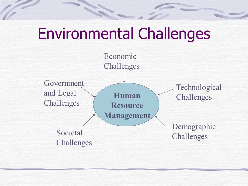 Environmental Challenges Human Resource Management Economic Challenges Technological Challenges Demographic Challenges Societal Challenges Government and Legal Challenges