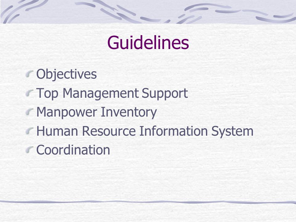 Guidelines Objectives Top Management Support Manpower Inventory Human Resource Information System Coordination