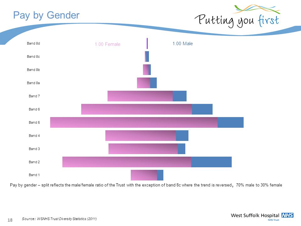 18 Pay by Gender Pay by gender – split reflects the male/female ratio of the Trust with the exception of band 8c where the trend is reversed, 70% male to 30% female Source: WSNHS Trust Diversity Statistics (2011)