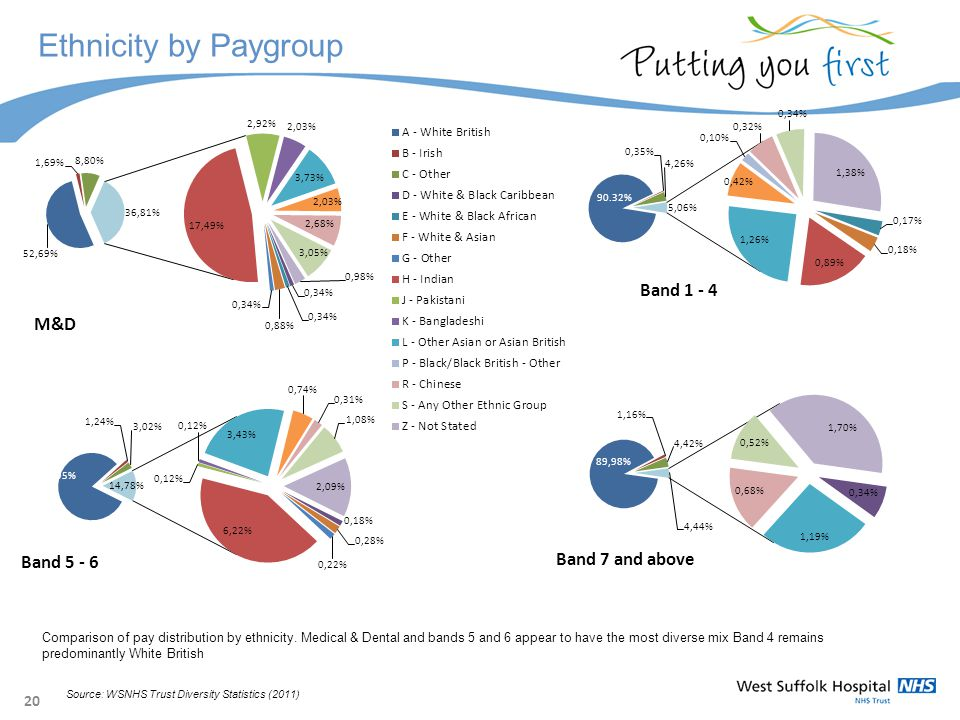 20 Ethnicity by Paygroup Comparison of pay distribution by ethnicity.