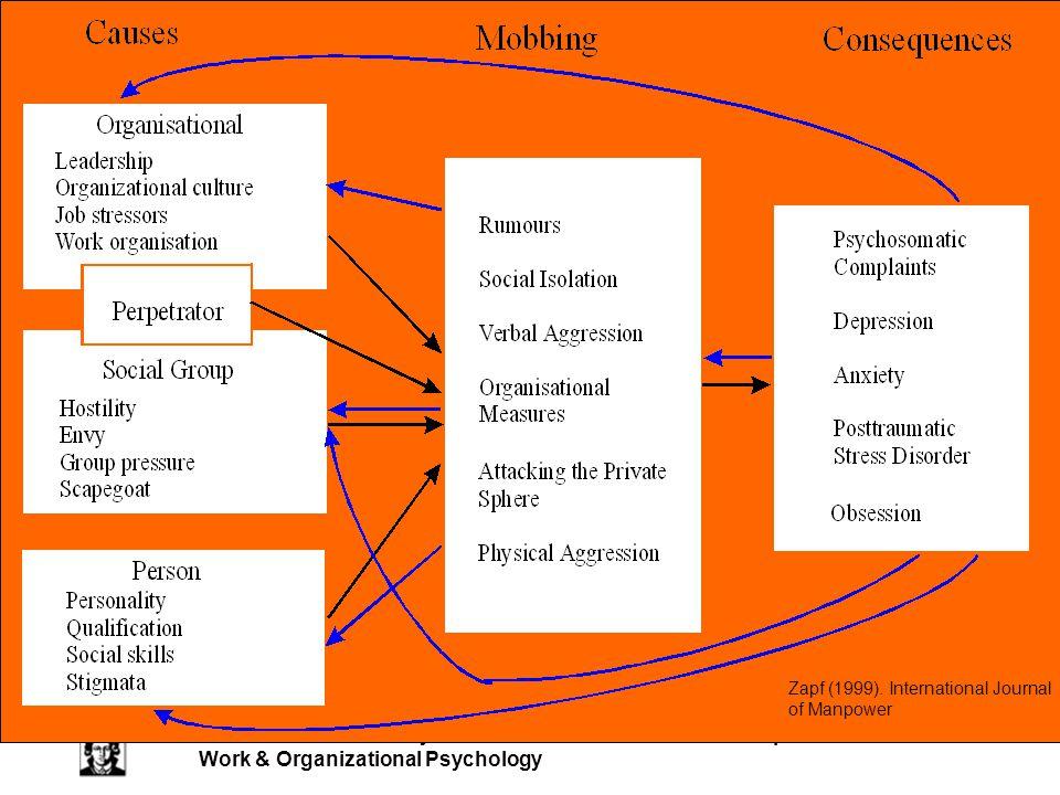 J.W. Goethe-University Frankfurt Dieter Zapf 24 Work & Organizational Psychology Zapf (1999).
