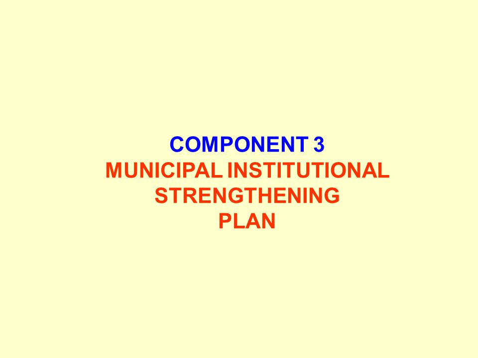 COMPONENT 3 MUNICIPAL INSTITUTIONAL STRENGTHENING PLAN