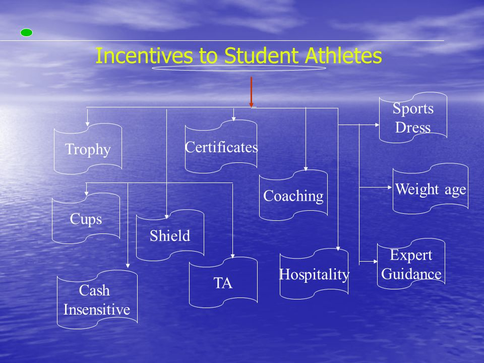Trophy Certificates Cups Shield TA Expert Guidance Coaching Hospitality Weight age Sports Dress Incentives to Student Athletes Cash Insensitive
