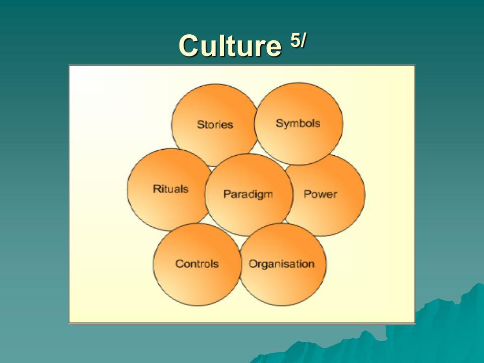 Culture 5/