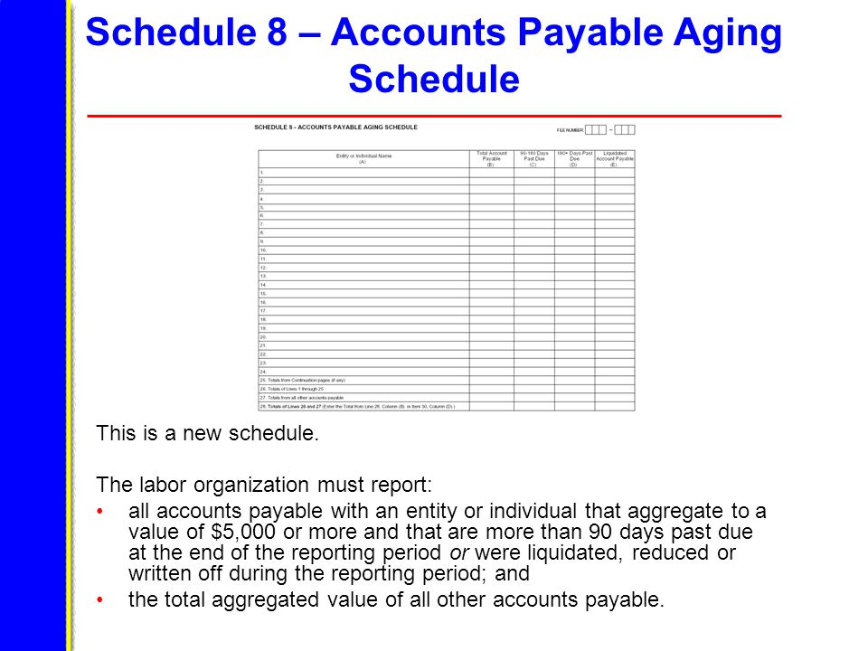 Schedule 8 – Accounts Payable Aging Schedule This is a new schedule.