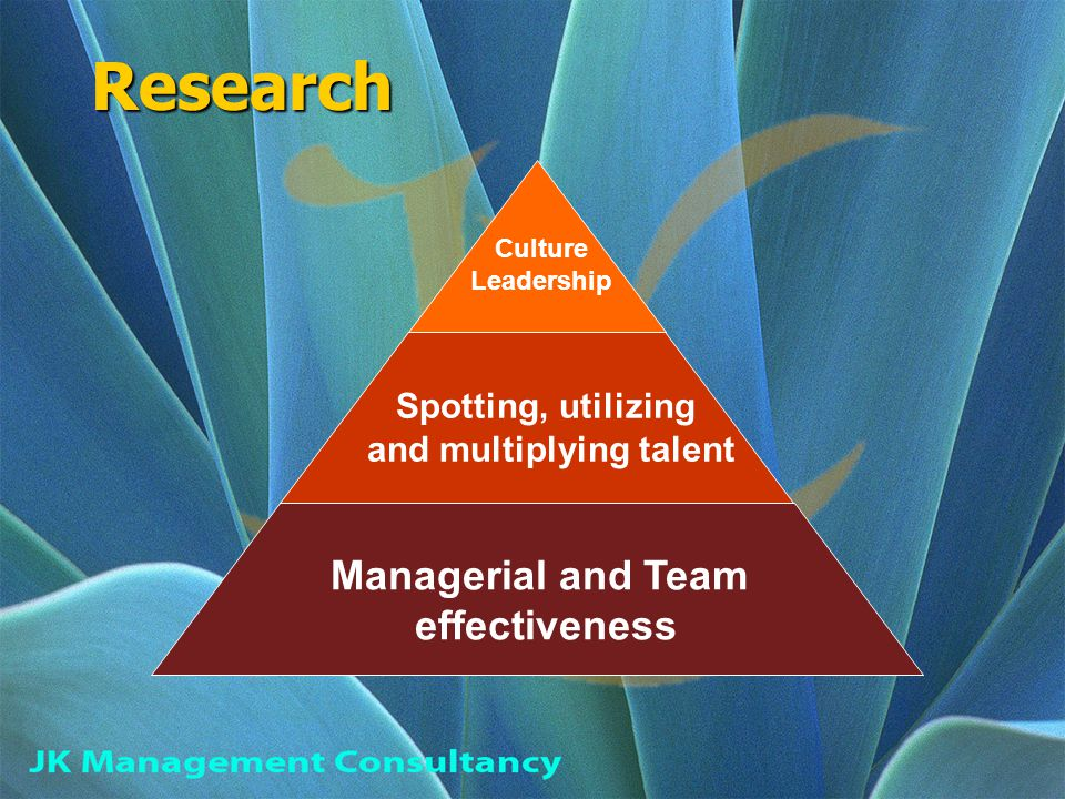 Research Managerial and Team effectiveness Spotting, utilizing and multiplying talent Culture Leadership