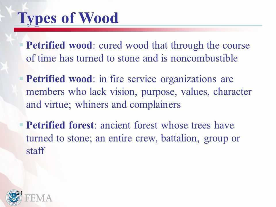 21 Types of Wood  Petrified wood: cured wood that through the course of time has turned to stone and is noncombustible  Petrified wood: in fire service organizations are members who lack vision, purpose, values, character and virtue; whiners and complainers  Petrified forest: ancient forest whose trees have turned to stone; an entire crew, battalion, group or staff