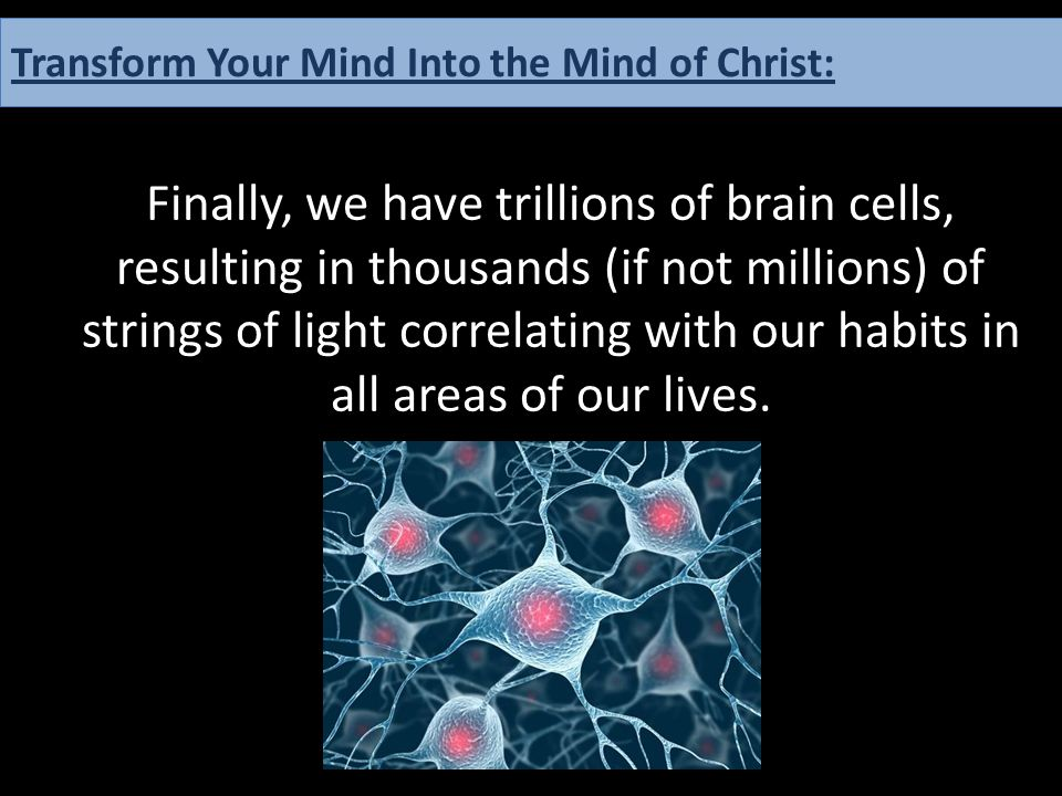 Finally, we have trillions of brain cells, resulting in thousands (if not millions) of strings of light correlating with our habits in all areas of ou