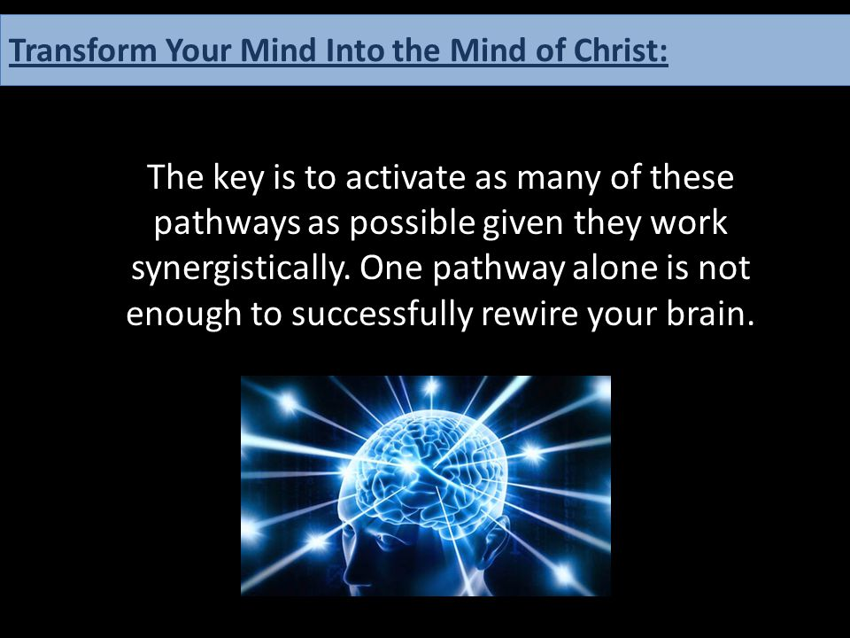 The key is to activate as many of these pathways as possible given they work synergistically. One pathway alone is not enough to successfully rewire y