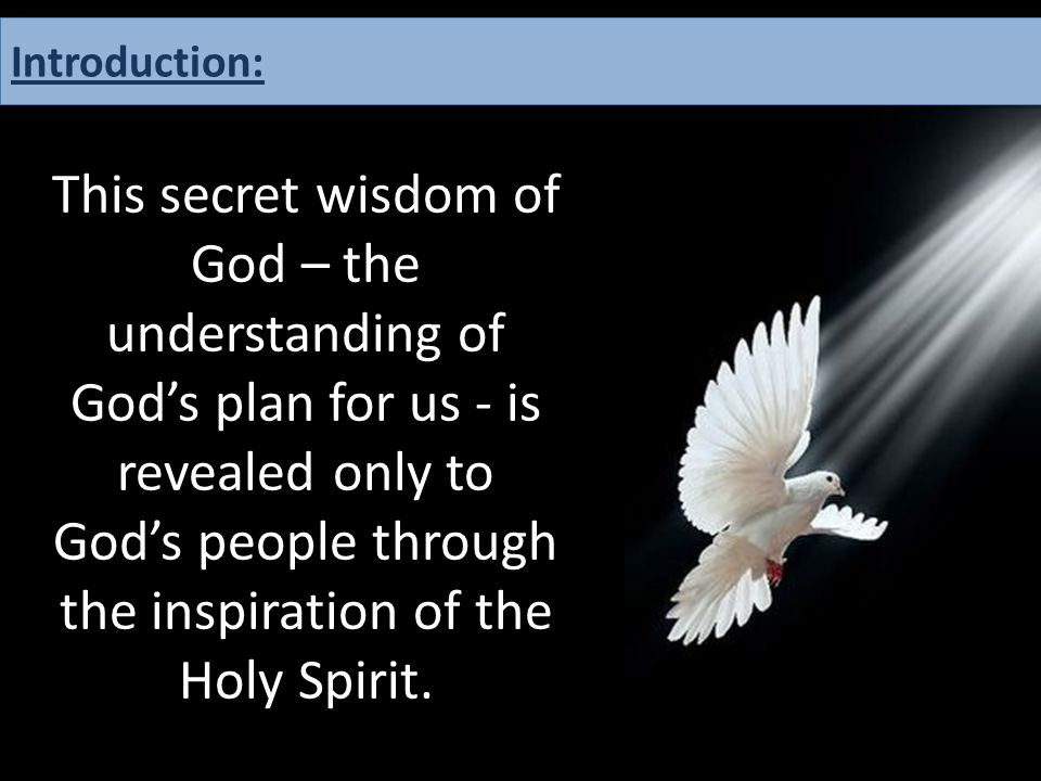 This secret wisdom of God – the understanding of God's plan for us - is revealed only to God's people through the inspiration of the Holy Spirit. Intr