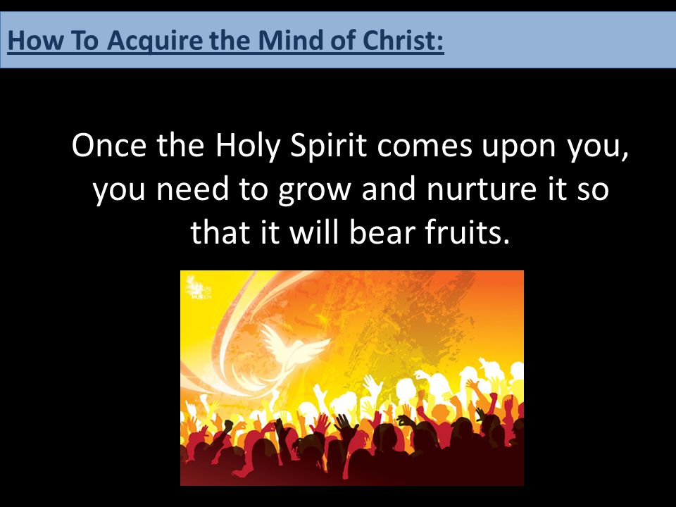 Once the Holy Spirit comes upon you, you need to grow and nurture it so that it will bear fruits. How To Acquire the Mind of Christ: