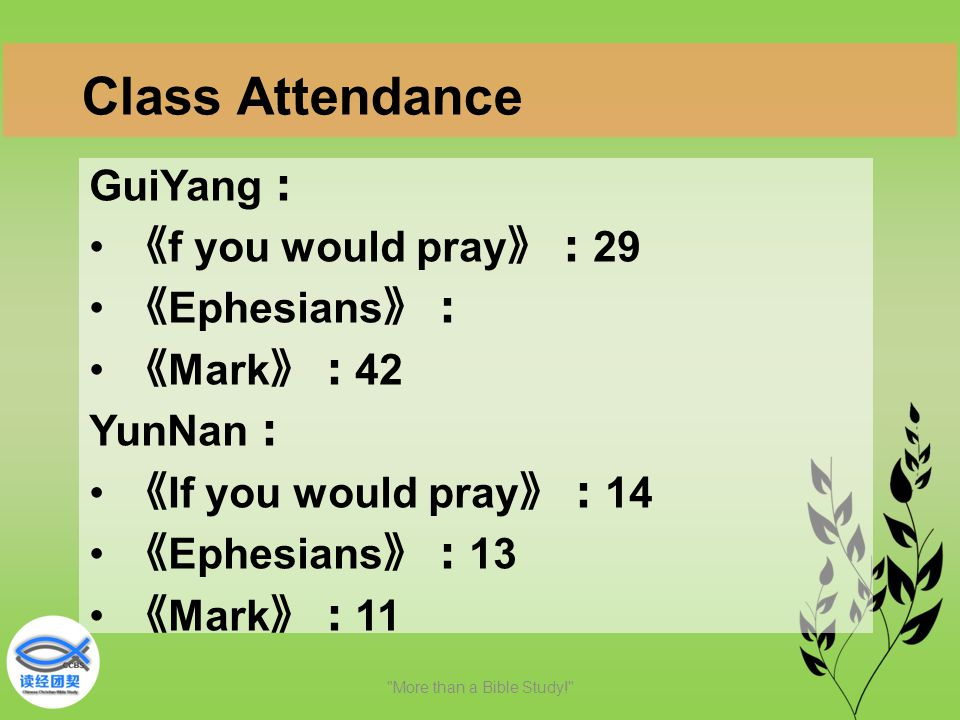 GuiYang : 《 f you would pray 》: 29 《 Ephesians 》: 《 Mark 》: 42 YunNan : 《 If you would pray 》: 14 《 Ephesians 》: 13 《 Mark 》: 11 More than a Bible Study! Class Attendance