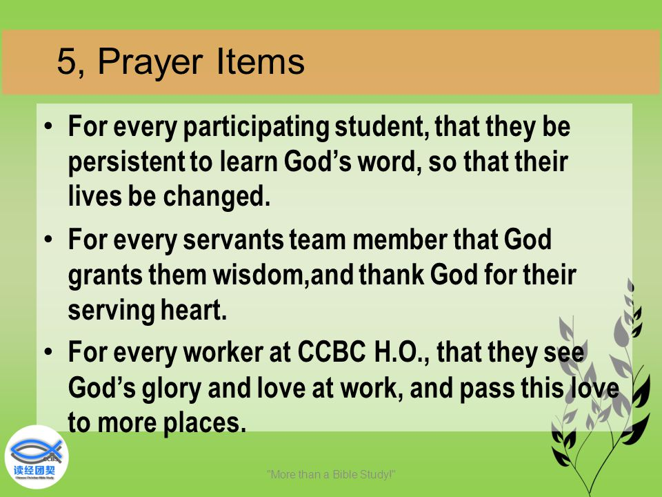 For every participating student, that they be persistent to learn God's word, so that their lives be changed. For every servants team member that God