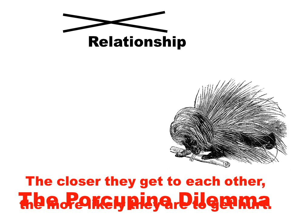 The Porcupine Dilemma The closer they get to each other, the more likely they are to get hurt.