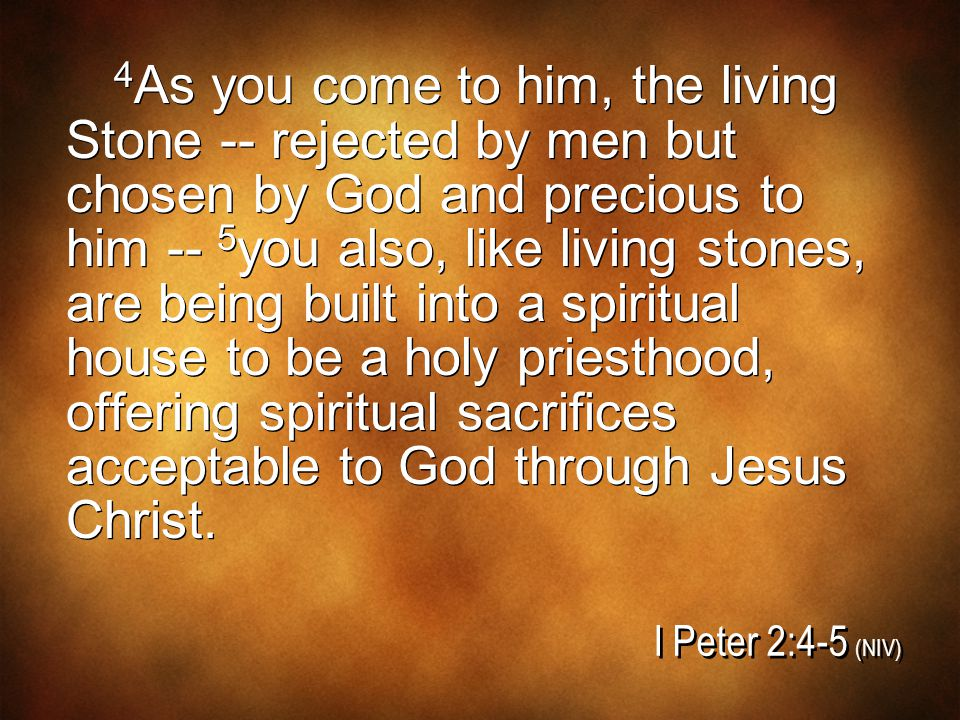 4 As you come to him, the living Stone -- rejected by men but chosen by God and precious to him -- 5 you also, like living stones, are being built int