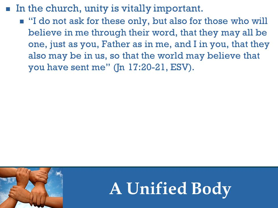 """A Unified Body In the church, unity is vitally important. """"I do not ask for these only, but also for those who will believe in me through their word,"""