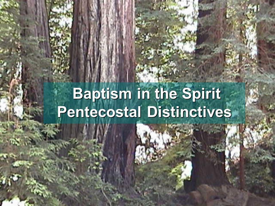 Baptism in the Spirit Pentecostal Distinctives Baptism in the Spirit Pentecostal Distinctives