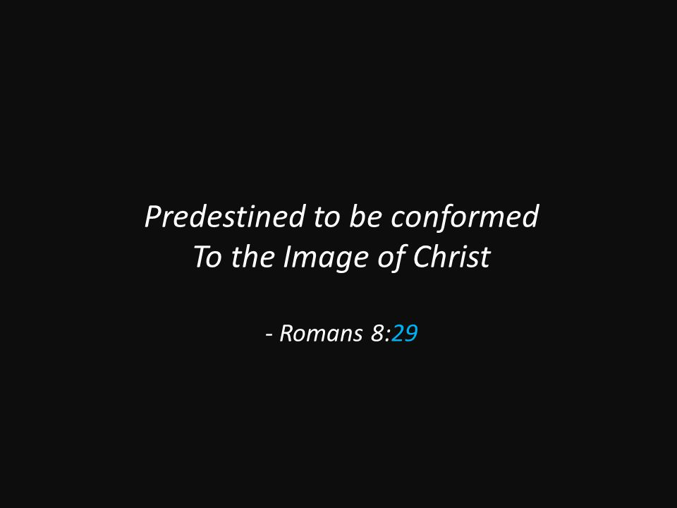 Predestined to be conformed To the Image of Christ - Romans 8:29