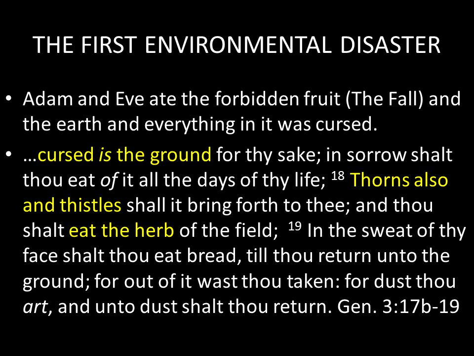 THE FIRST ENVIRONMENTAL DISASTER Adam and Eve ate the forbidden fruit (The Fall) and the earth and everything in it was cursed. cursed is the ground …
