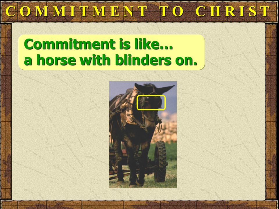 C O M M I T M E N T T O C H R I S T Commitment is like… a horse with blinders on.